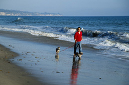 A Walk on the Beach with Health Savings Account Freedom